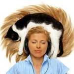 кошки лечат