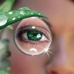 глаза,зрение, народные средства
