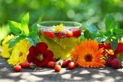 травяной чай, полезные свойства