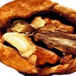 женское здоровье, орех, фиброма матки