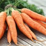 морковь, полезные свойства