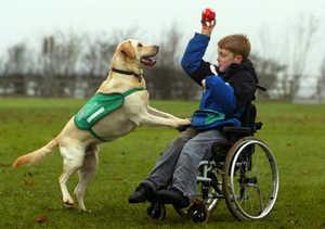 ребенок-инвалид, полиомиелит