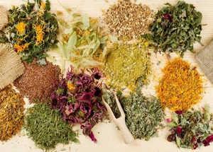 травяные сборы, травы